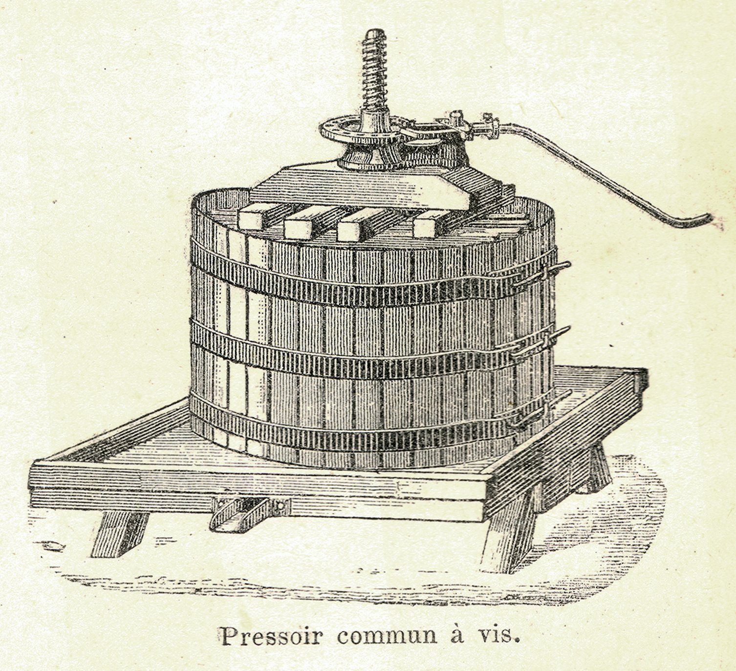 Vertical Screw Press Winemaking Google Search With Images