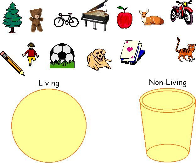 math worksheet : 1000 images about living nonliving on pinterest  living and  : Living And Nonliving Worksheets For Kindergarten