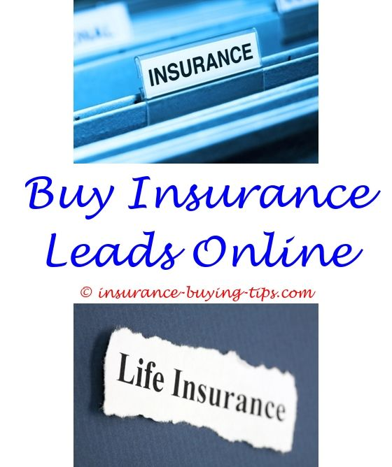 Free Insurance Quotes Interesting Free Auto Insurance Quotes  Buy Life Insurance Online