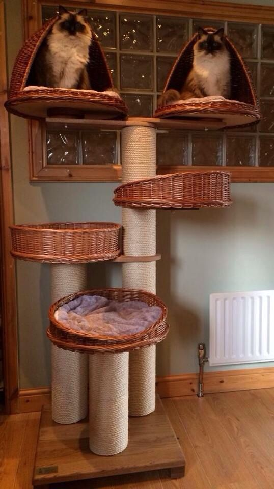 Tigga Towers Double Top Bed Tower Custom Fur Babies