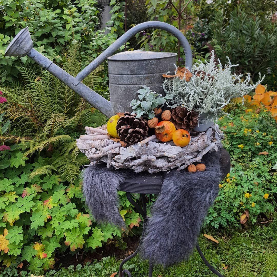 Gefallt 1 115 Mal 54 Kommentare Mein Weg Zum Gartengluck Landhaus Garten Auf Instagram Die Giesskanne Hatte In Diesem Sommer Schwerstarbeit