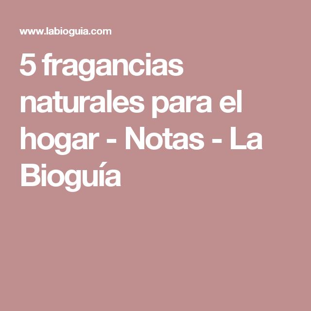 5 fragancias naturales para el hogar - Notas - La Bioguía