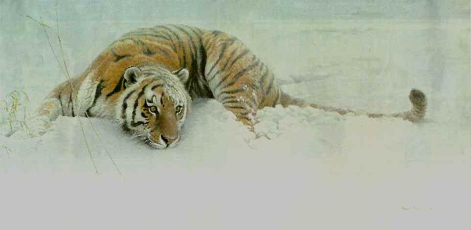 Sudden Move - Siberian Tiger By Robert Bateman