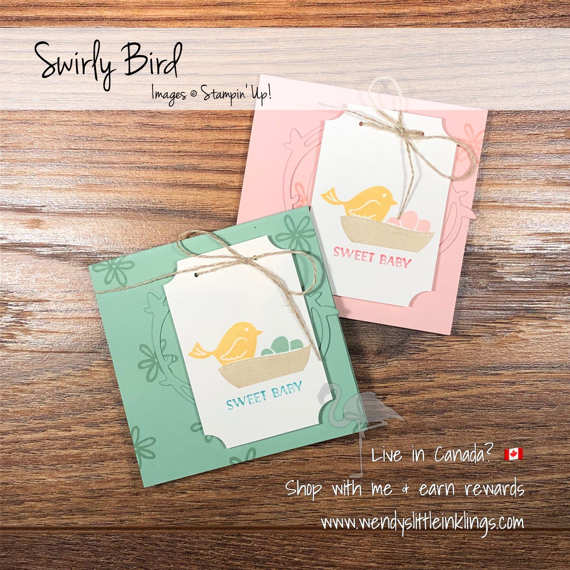 3x3 swirly bird notecards for baby gifts note cards