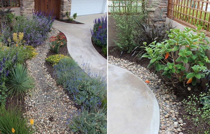 CA Friendly Gardening Solutions   Plants, Drought tolerant and Yards