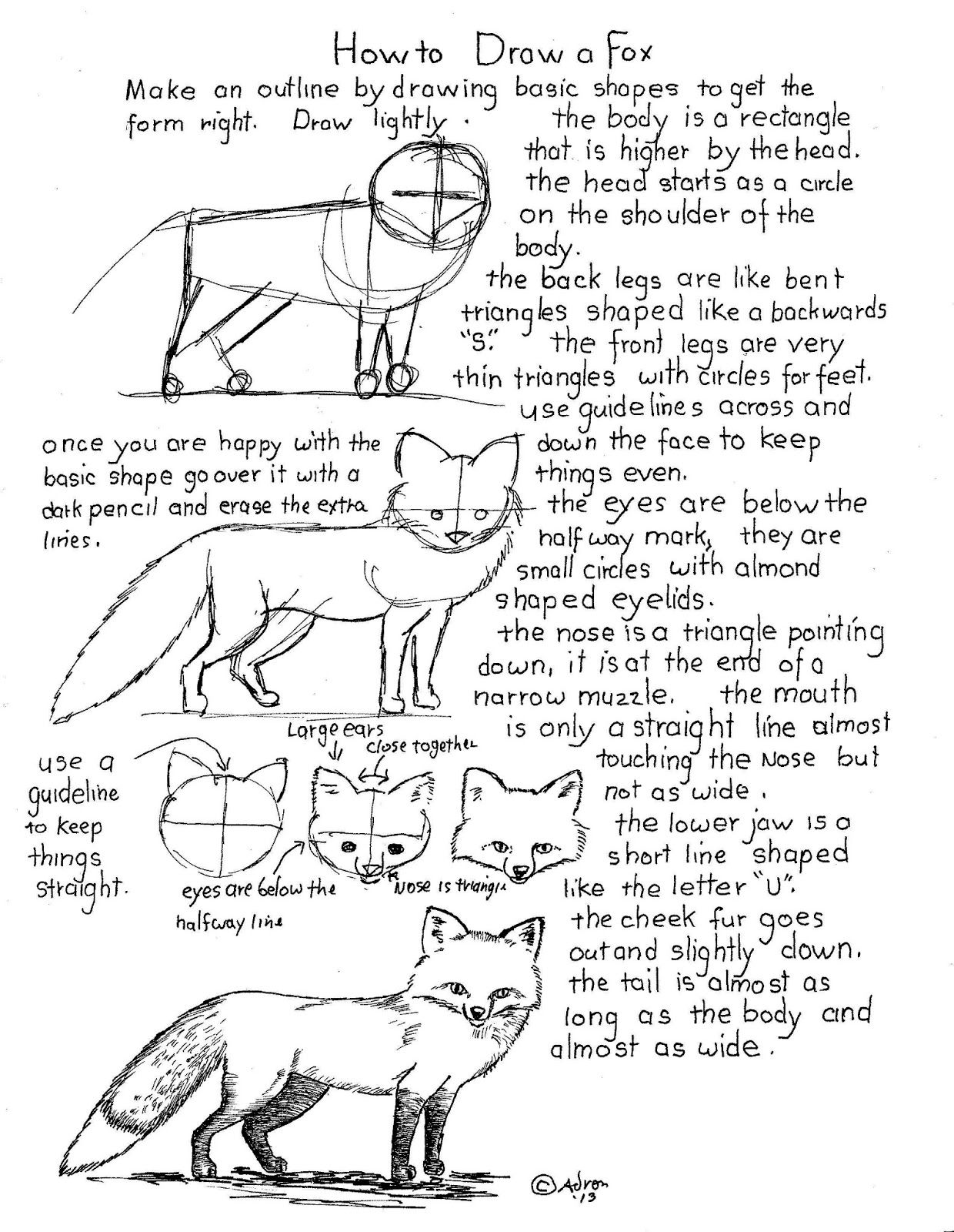 how to draw worksheets for the young artist how to draw a fox worksheet - How To Draw Printables