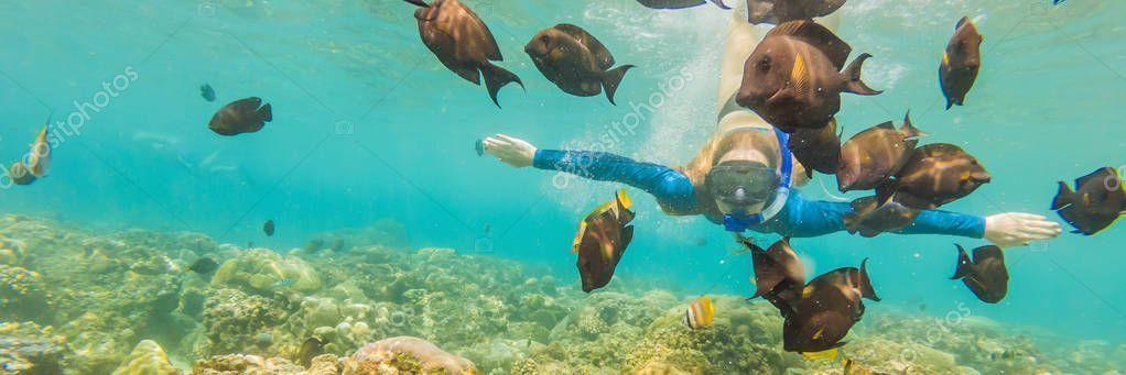 snorkeling mask dive underwater with tropical fishes in coral ree Happy woman in snorkeling mask dive underwater with tropical fishes in coral ree woman in snorkeling mas...