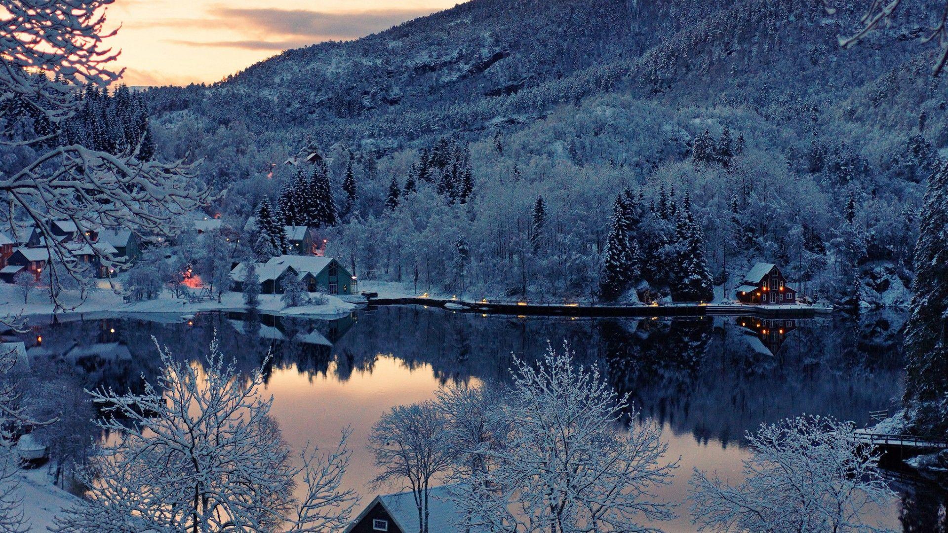 Noruega, árboles y nieve