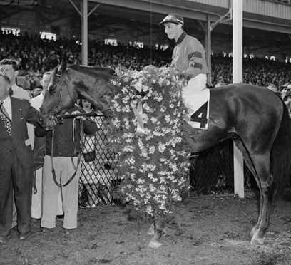 Citation 1948 Triple Crown Winner With Images Thoroughbred Horse Racing Horses Thoroughbred Horse