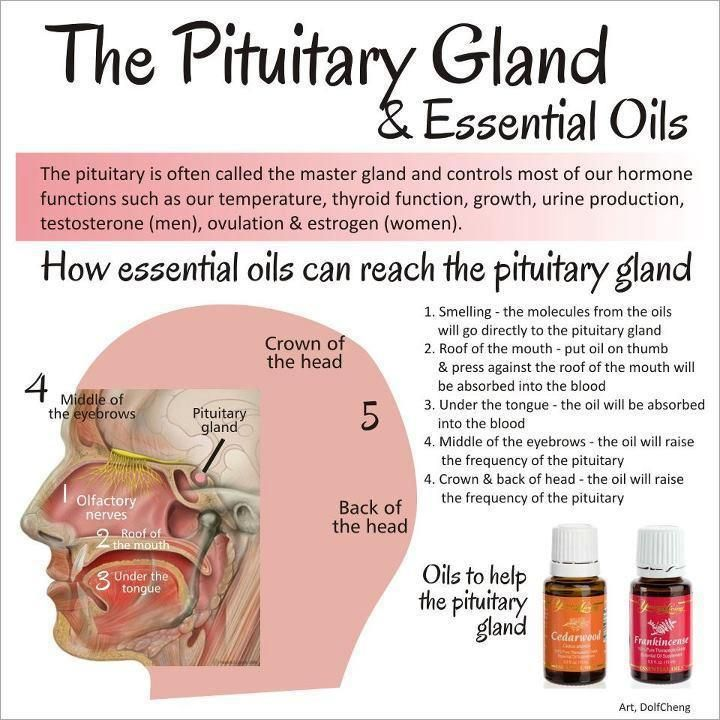 Can You See How Essential Oils Like Frankincense And