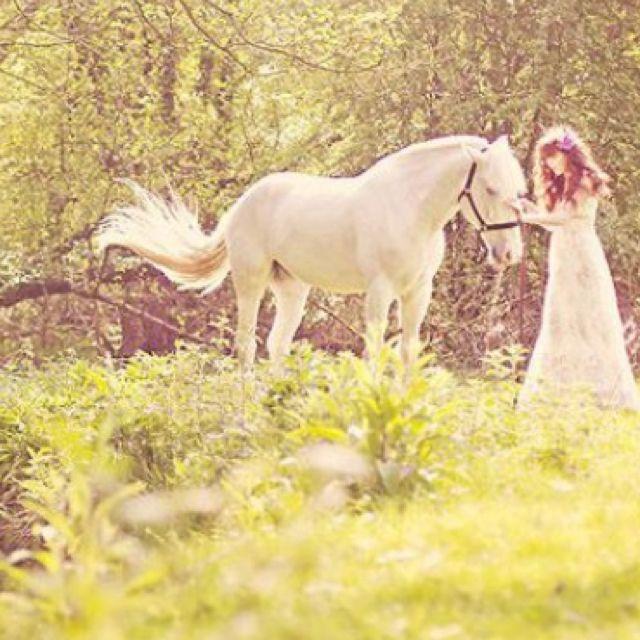 Great shot #wedding- i want a horse
