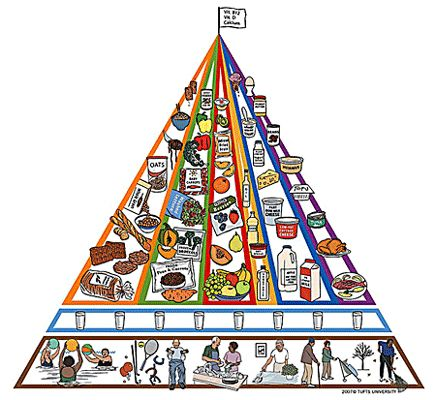 Image: Chart of modified MyPyramid for Older Adults. | Your Health ...