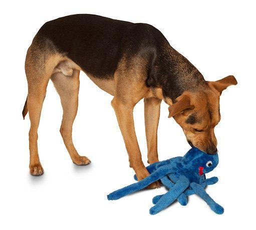 Plush Puppies By Kyjen Large Octopus Dog Toy Plush Dog Toys Dog