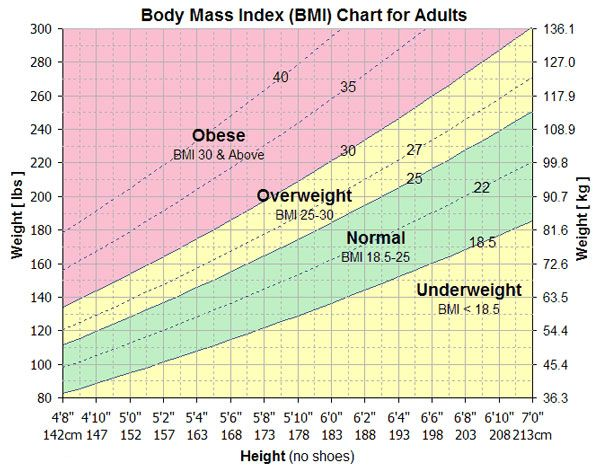 Bmi Calculator  Fitness    Calculator Fitness