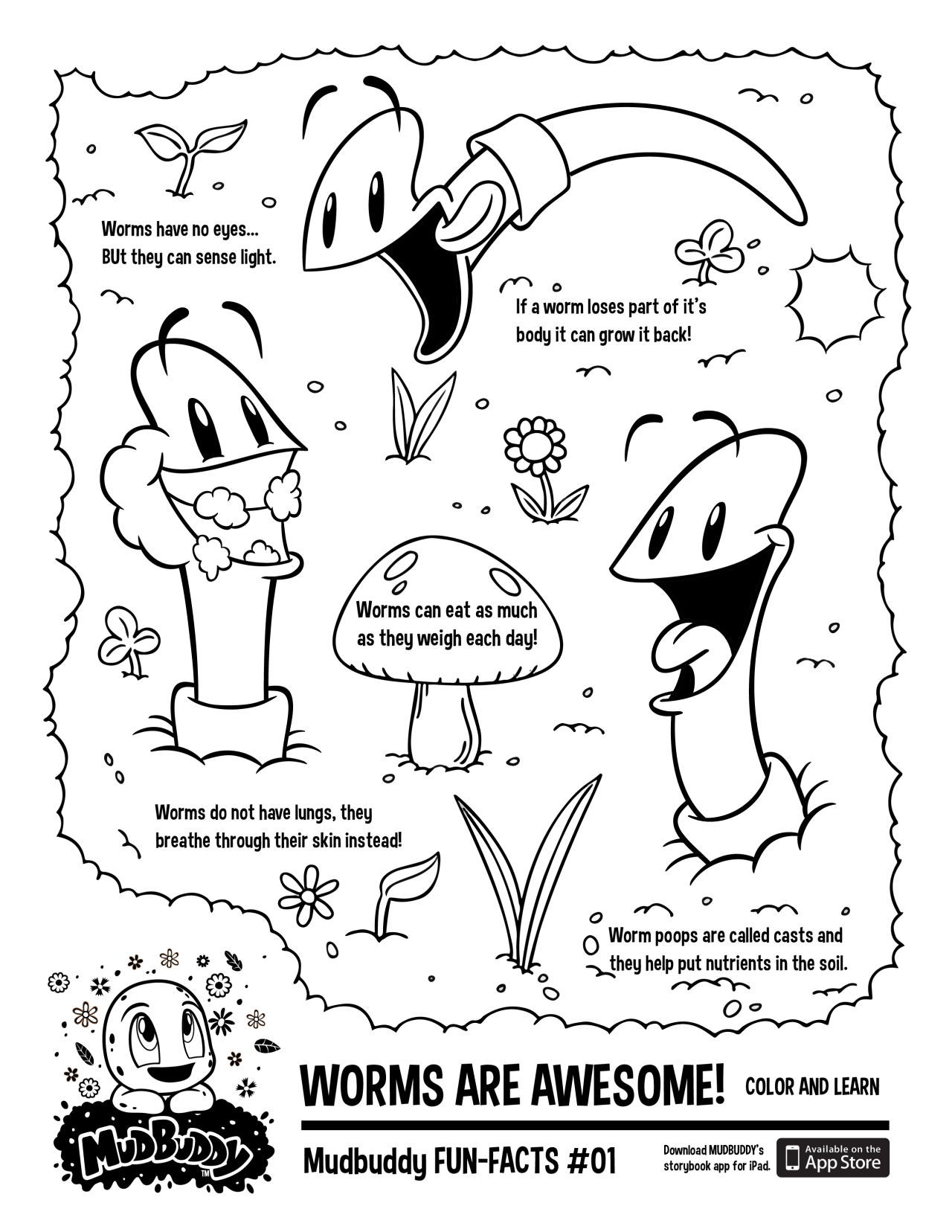 Mudbuddy FUN FACTS! Print out this page and have fun