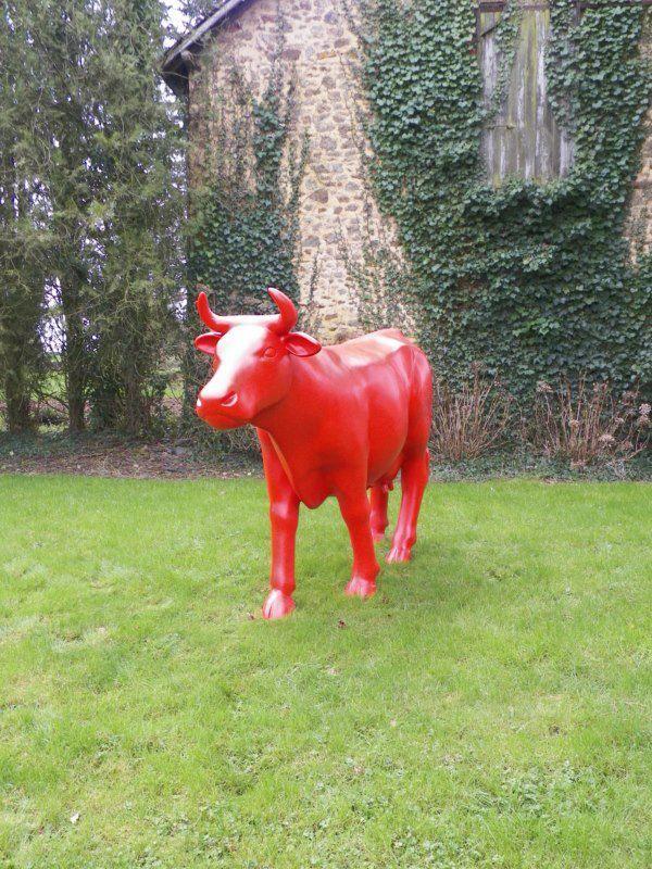 une vache toute rouge magnifique sur cette pelouse. Black Bedroom Furniture Sets. Home Design Ideas