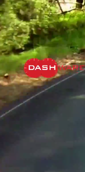 Dashware video overlay software voor de dashcam | Video