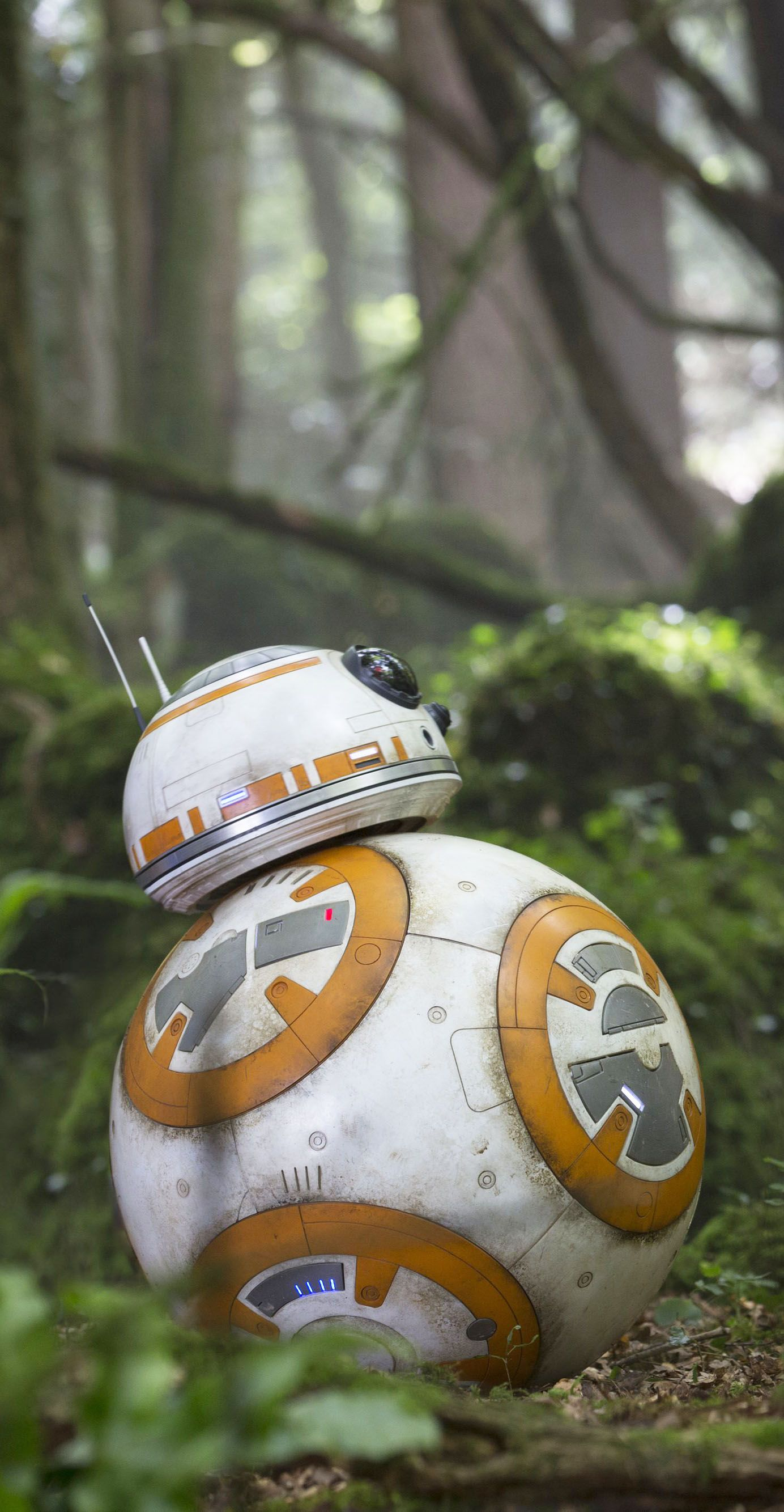 Star Wars Vii Bb 8 Hd Star Wars Wallpaper Iphone Star Wars Wallpaper Star Wars Droids