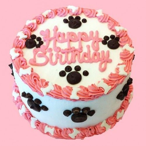 Birthday cakes for dogs Perfect for the furry princess in your
