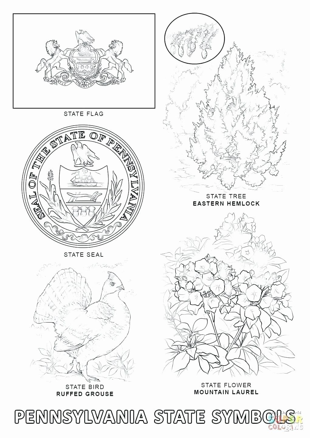 Pennsylvania State Bird Coloring Page Unique Scientific Notation Coloring Worksheet Cortexcolor Bird Coloring Pages Pennsylvania History Coloring Pages