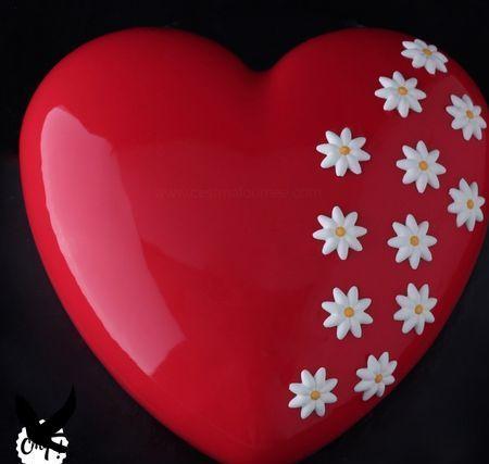 Le Red Dingue (entremets passion/framboise/vanille) Le Red Dingue (entremets passion/framboise/vanille)