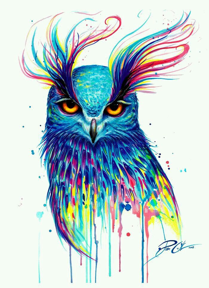 Pin By Maria On Likes Of Mine Art Prints Art Owls Drawing