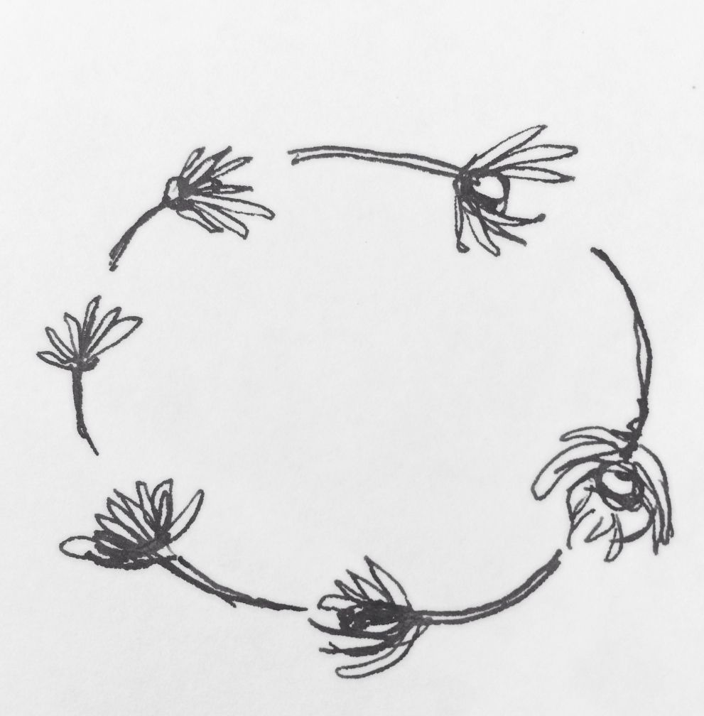 This Is What I Meant By Having A Daisy Chain Type Thing Framing The