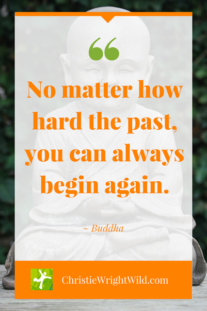 how to write a reverse new years resolution no matter how hard the past you can always begin again buddha quotes about resolutions
