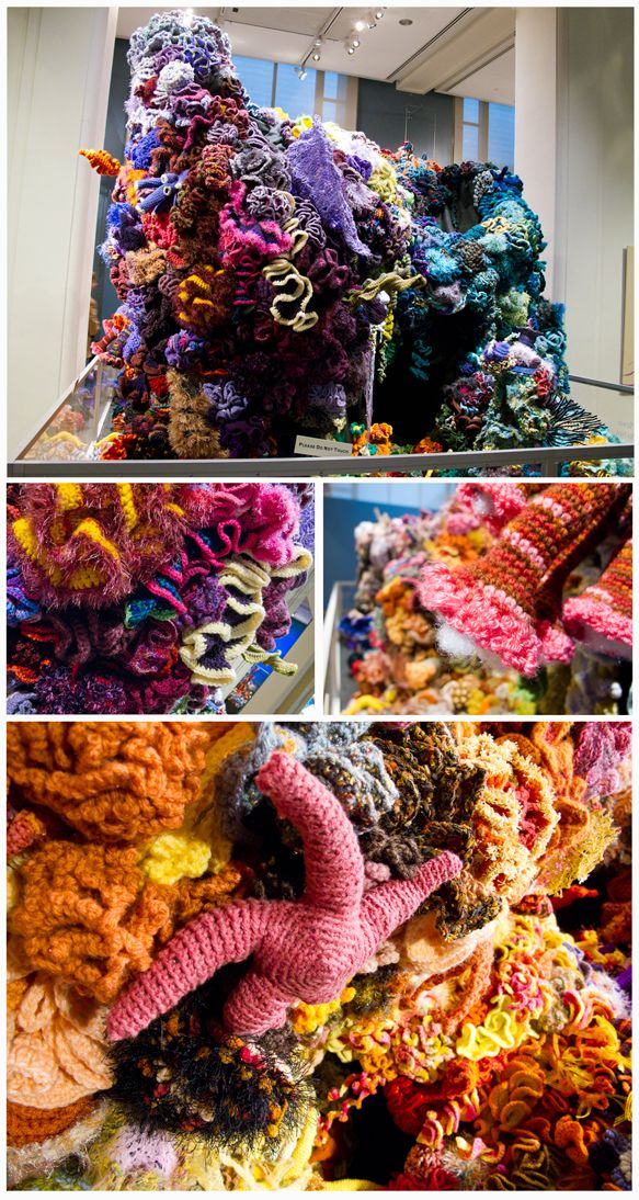 hyperbolic coral reef at the smithsonian