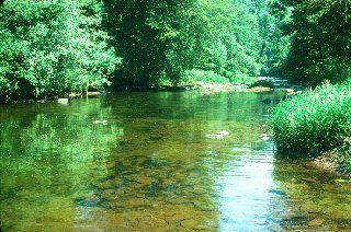 River Barle below Brewers Castle.