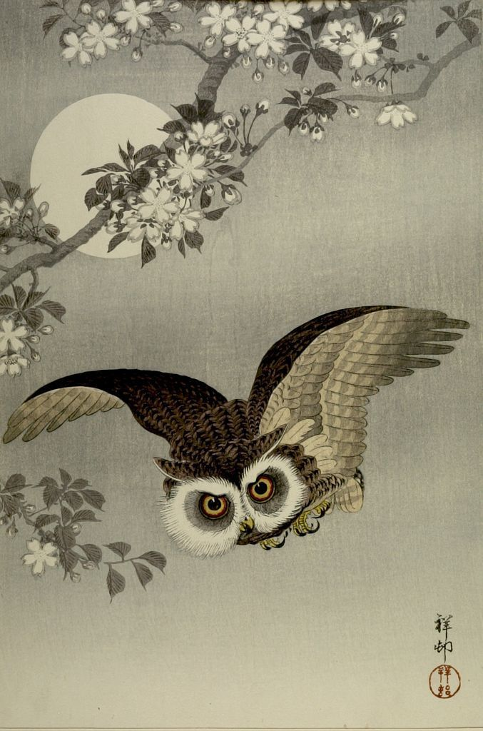 китайские картинки для декупажа совы практически всегда