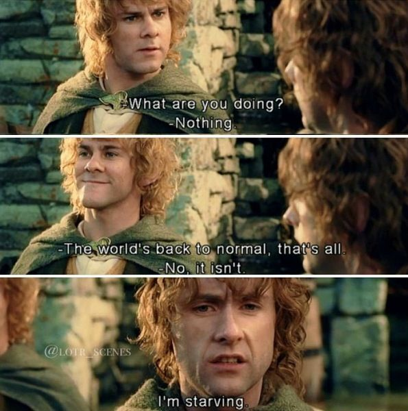 "Pippin: ""What are you doing?"" Merry: ""Nothing. The worlds back to normal, that's all."" Pippin: ""No it isn't...I'm STARVING."" #MiddleBackPain"