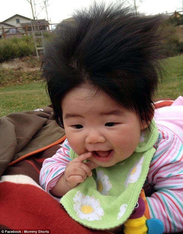 Babies · Life's a breeze: Maybe the wind was responsible for this little  tot's wacky hairstyle - Mini Mohawks And Static Frizz: Babies Battle It Out In Contest For