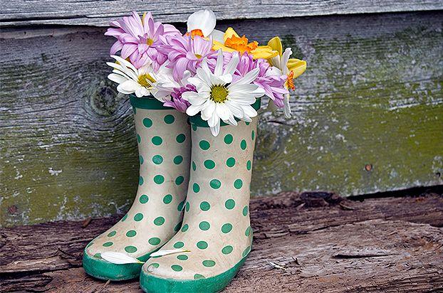 Par de botas servindo como vasos. Arranjo de flores. Criatividade para o jardim.