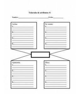 Organizador Telaraña de atributos para describir