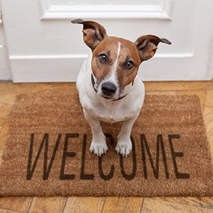 7 steps to writing a welcome email campaign...