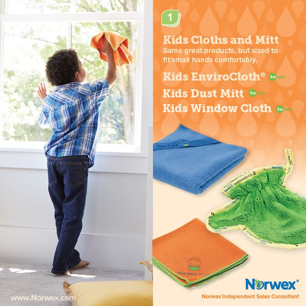 Norwex Window Cleaning: Norwex (1) Kids Cloth And Mitt, Kids EnviroCloth, Kids