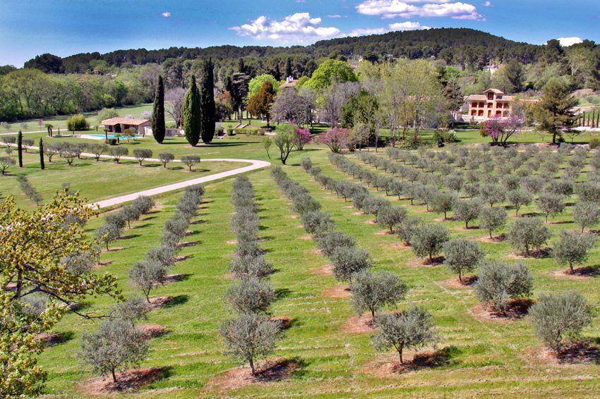 Private grounds of hugely impressive ch teau la bastide - Piscine plein air aix en provence ...