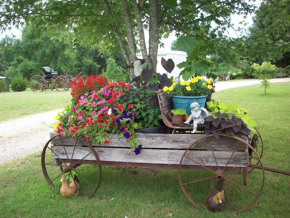 Фотосессии на телеге в саду