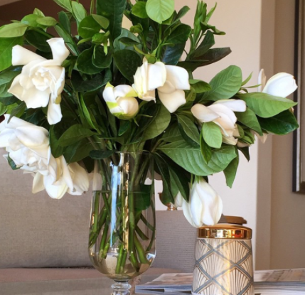 Beautiful Gardenias In A Vase Gardenia Flower Arrangement High Camp Gardenias In A Vase Gardenia Luxury Flowers Gardenia Bouquet Home Floral Arrangements