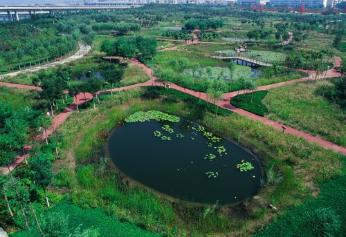 The red ribbon of the tanghe river park in qinhuangdao for Red landscape architects