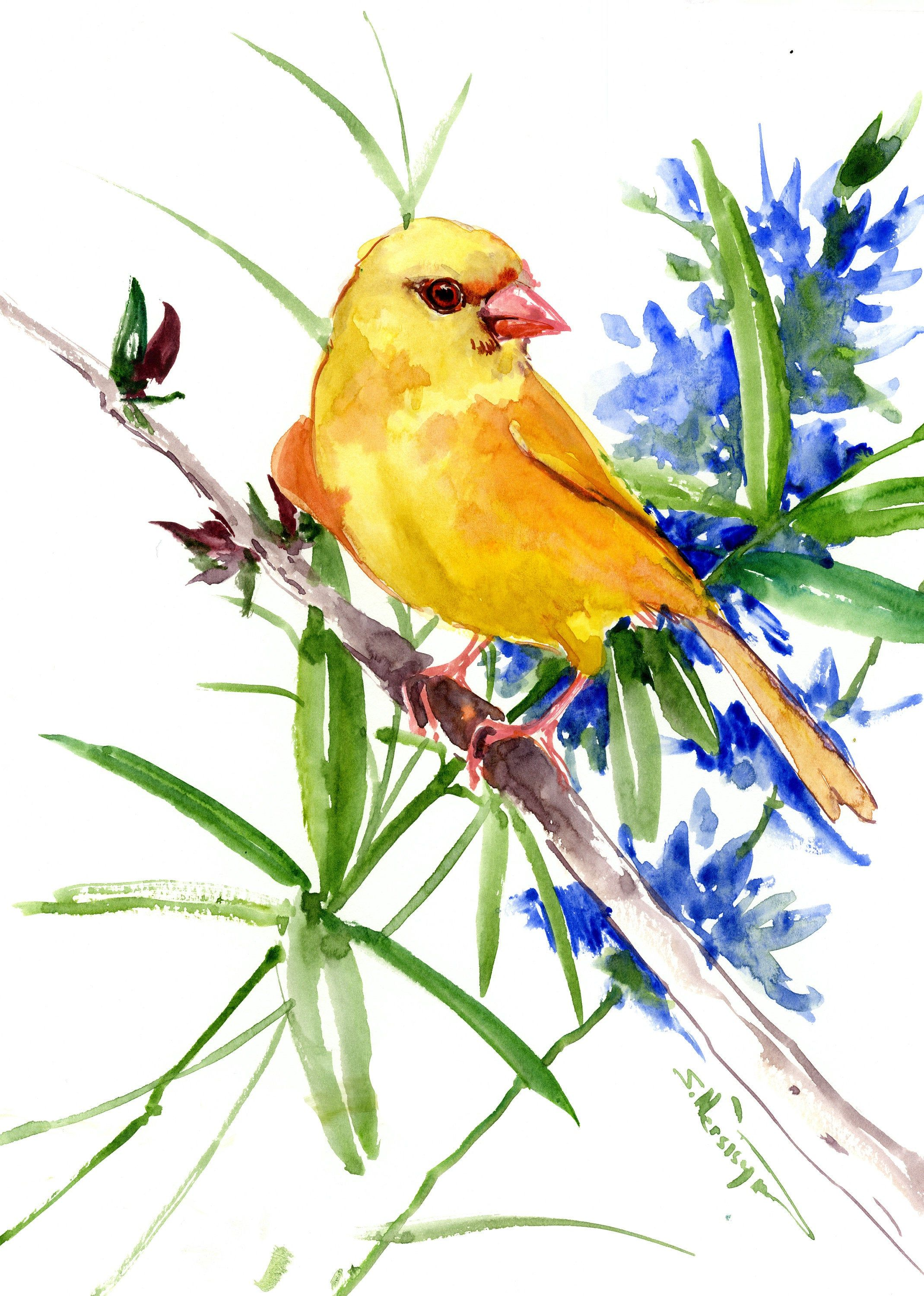 Bird Artwork Original Watercolor Painting Canary And Flowers In