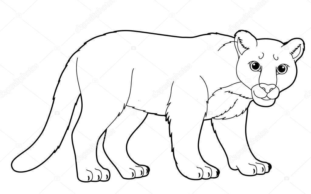 Puma Para Colorear In 2020 Animal Doodles Illustration Animals Wild