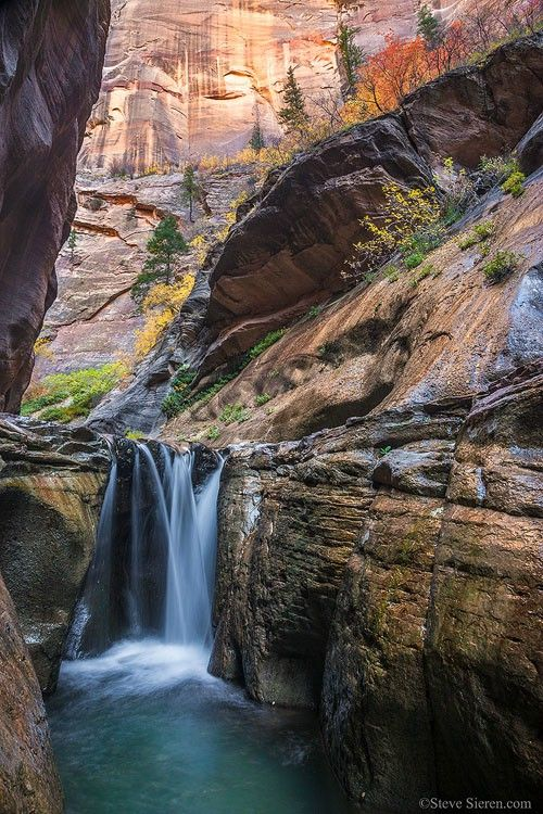 Zion Canyon Fall Color