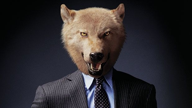 Power Hungry: How a Top Dog Suits Up