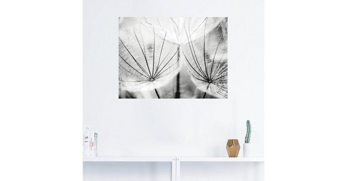 Photo of Artland Premium Wandfolie »Julia Delgado: Pusteblume in schwarzweiß« online kaufen | OTTO
