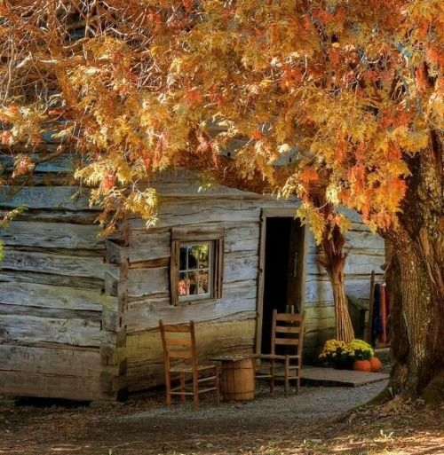 Delightful Cabins In The Woods Old Houses Country Life