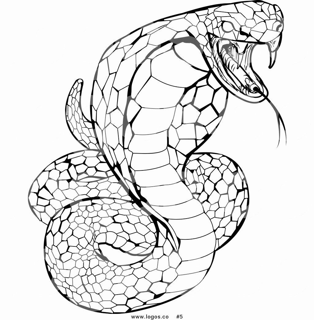 Alphabet Coloring Pages Momjunction Lovely Seductive Snake