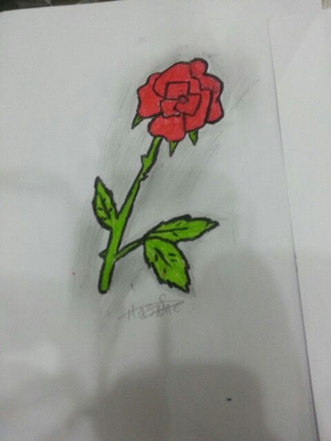 Dessin Rose Rouge Hasnae Pinterest