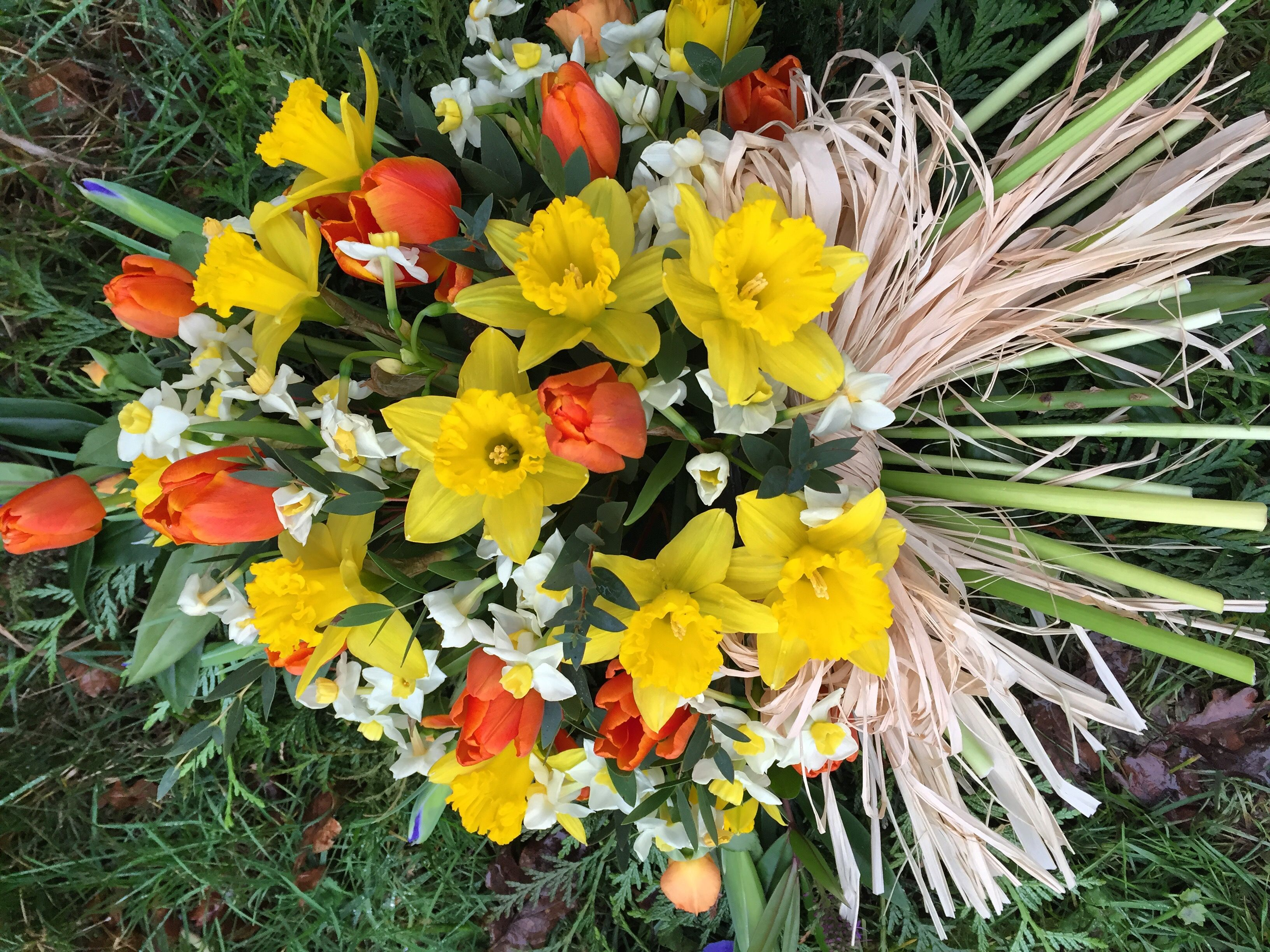 Spring Single Ended Funeral Tribute Tulips Daffodils And Narcissus